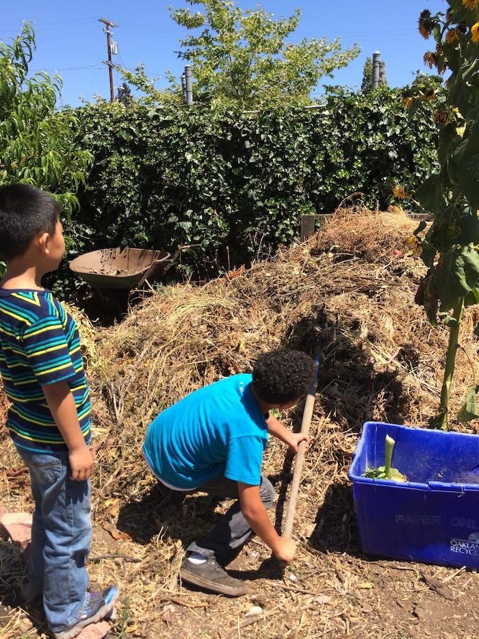 Scoop Compost