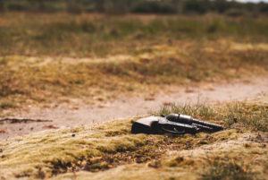 gun, Firmin DeBrabander event