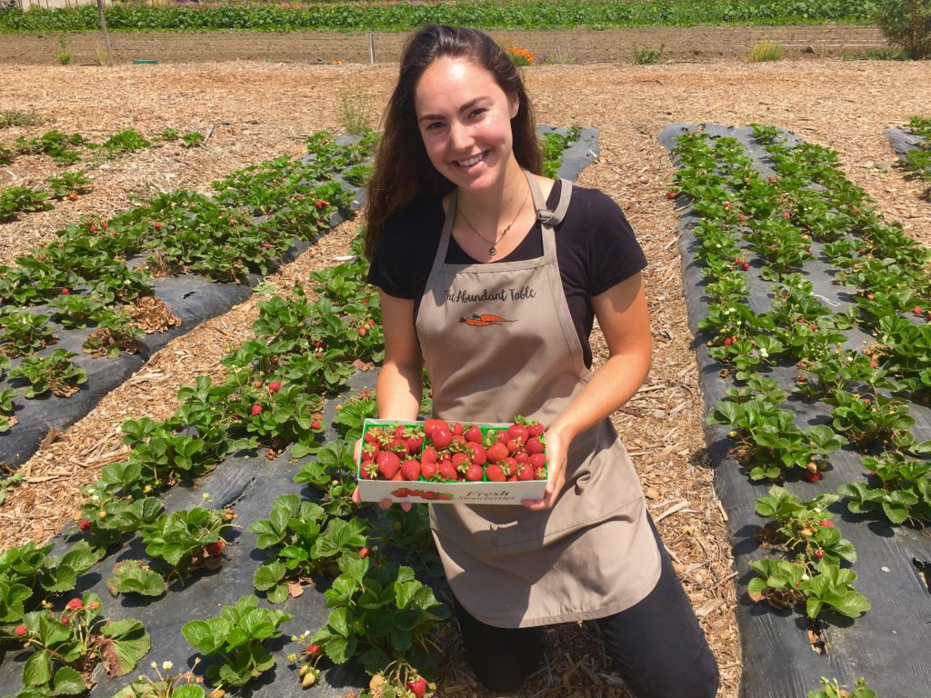 Isabella Hall picking strawberries