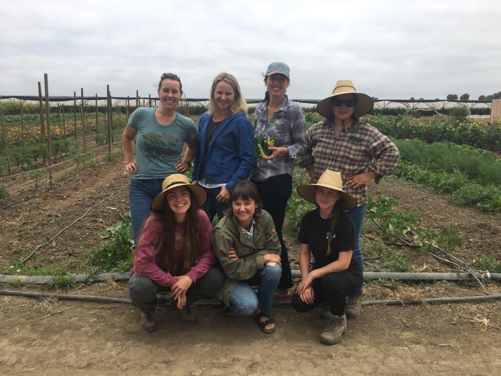 Abundant Table Farmers