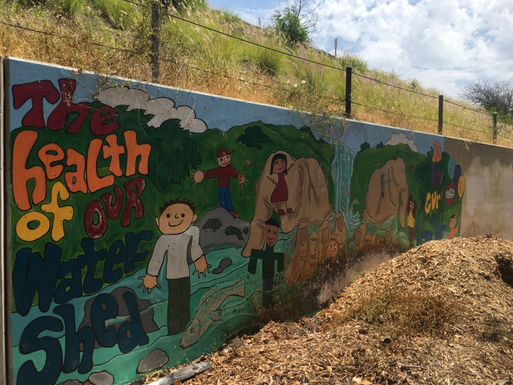 Watershed Mural