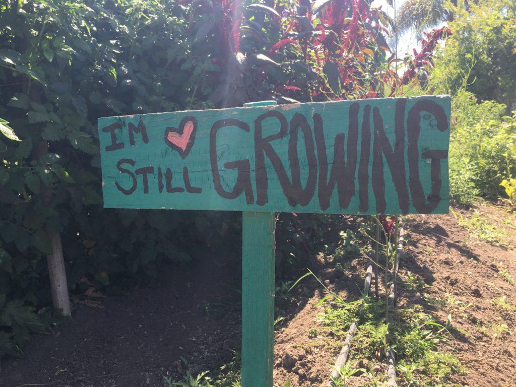 I'm Still Growing Sign