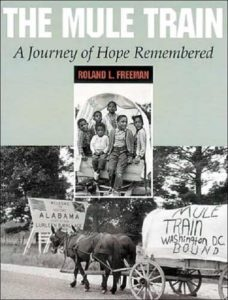 The Mule Train: A Journey of Hope Remembered, by Roland L. Freeman