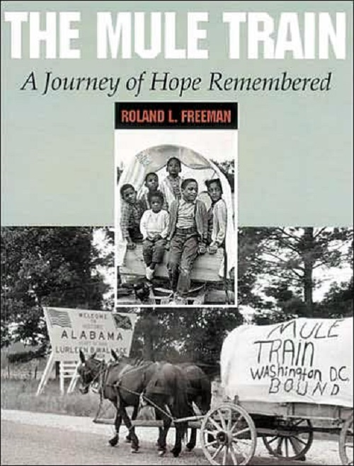 The Mule Train: A Journey of Hope Remembered